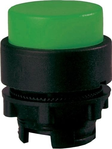 Drucktaster Plastik vorstehend Grün