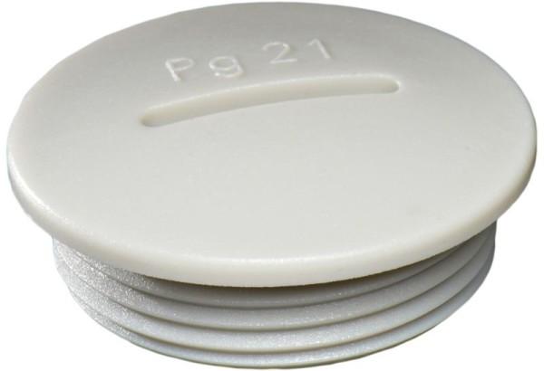 Verschlussschraube Polyamid glasfaserverstärkt, RAL7035 grau, VSG 48, PG48