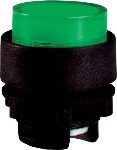 Drucktaster beleuchtet Plastik vorstehend Grün